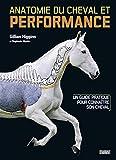 Anatomie du cheval et performance - Un guide pratique pour connaître son cheval