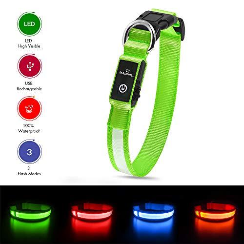 MASBRILL Wiederaufladbar LED Hund Halskette Halsband perfekt für Haustiere Hund - Wasserdicht (S, Grün)