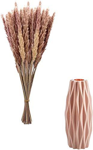 30 /50 Stück Pampasgras Getrocknet Deko mit Vasen 21cm, Blumenstrauß Boho Deko DIY für Inneneinrichtung Schlafzimmer Wohnzimmer Balkon Badezimmer Zimmer Tischdeko Hochzeit (30 StksB + Vase(Rosa))