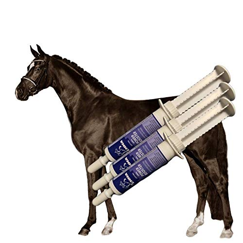 Vitamine & Spuenelemente Paste für Pferde I Booster I B-Vitamine I Vitamin E B-komplex B12 Eisen Zink Lysin I Mineralien I Immunsystem stärken I Nährstoffe hochdosiert Oldie Stuten Pferd 3St