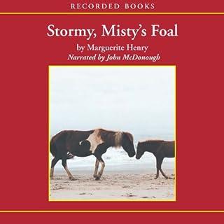 Stormy, Misty's Foal cover art