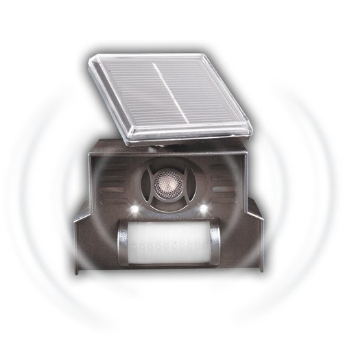 Gardigo Solar Hunde- und Katzenabwehr I Hundeschreck, Katzenschreck, Ultraschall Solar Funktion I Gute Alternative zu Spikes, Sprays oder Abwehrgitter I Deutscher Hersteller