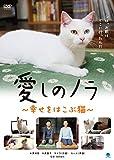 愛しのノラ ~幸せをはこぶ猫~[DVD]