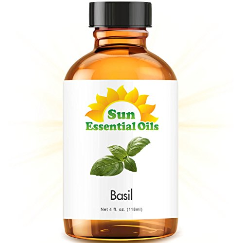 Basil Essential Oil (Huge 4oz Bottle) Bulk Basil Oil - 4 Ounce