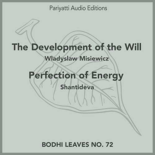 Page de couverture de The Development of the Will and Perfection of Energy