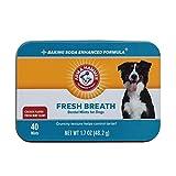 Arm & Hammer Fresh Breath Mints