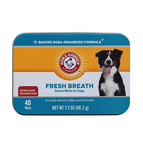 Arm & Hammer Dog Dental Care Fresh Breath Dental Mints for Dogs | Fresh Doggie Breath Without Brushing, 1.7 ounces (40 Pcs), Chicken Flavor