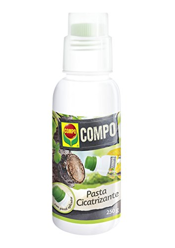 Compo Pasta cicatrizante, para heridas de poda y protección de injertos, con Pincel aplicador, 250 g
