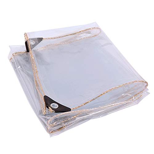 LIANGLIANG Toldo Impermeable,PVC Proteccion Solar Espesar Pabellón, Encendiendo Parabrisas Protección contra Frío Mantente Caliente 60 Tamaños, Personalización Soporte (Color : Claro, Size : 4x6m)