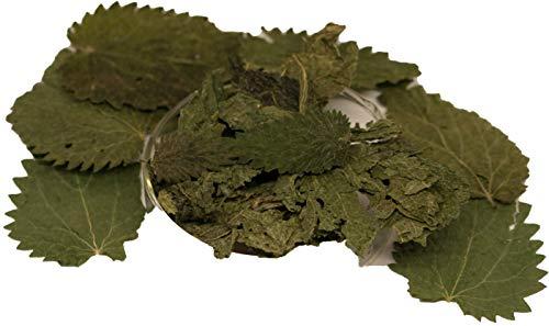 Salty Bee Brennesselblätter getrocknet - Garnelenfutter, Krebsfutter, Schneckenfutter im Aquarium