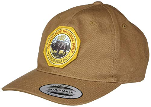 Pendleton Men's National Park Hat, Dark Tan, 1-SZ