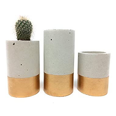 Concrete Succulent Planters/Air Plant Holders. Urba planters (set of 3) Gold.