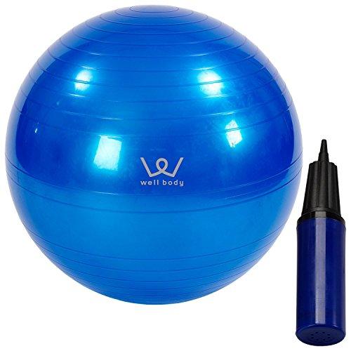 アルインコ(ALINCO) バランスボール 65cm エアーポンプ付 EXG025A ブルー
