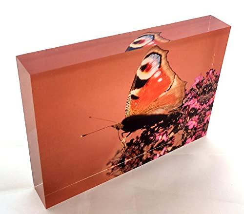 Generisch Mariposa, mariposa sobre una canción de mariposa, en color rojo oscuro sobre bloque de cristal acrílico (8 x 10,5 cm).