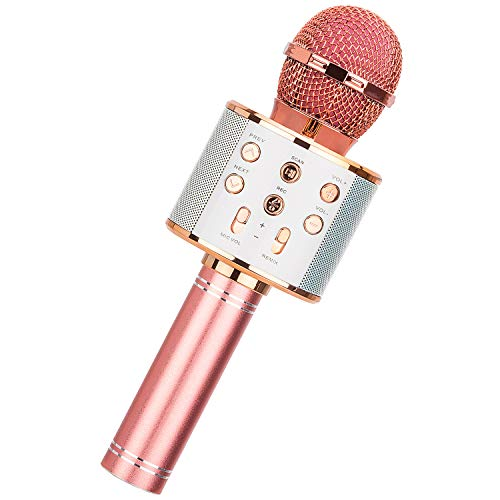 HL Audio Wireless Bluetooth Karaoke Microphone for Kids, Car Karaoke Microphone, Singing Toys Gifts for 4-12 Year Old Girls Kids, Kids Girls Microphone for Singing (Rose Gold)