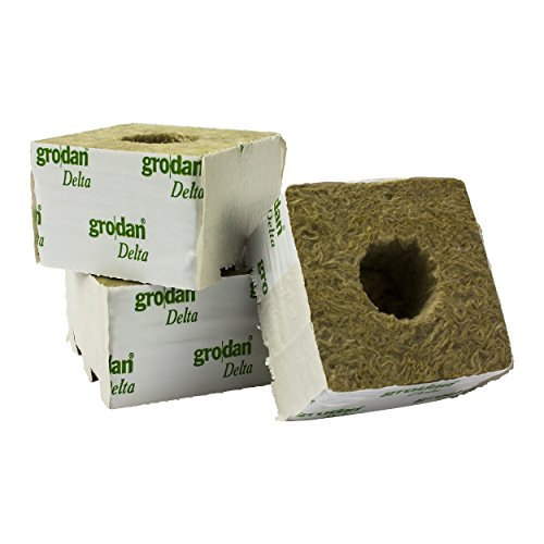 GRODAN Delta 10 cm x 10 cm x 6,5 cm piccolo foro in diverse quantità incluso greenception wuchs fertilizzante 100 G