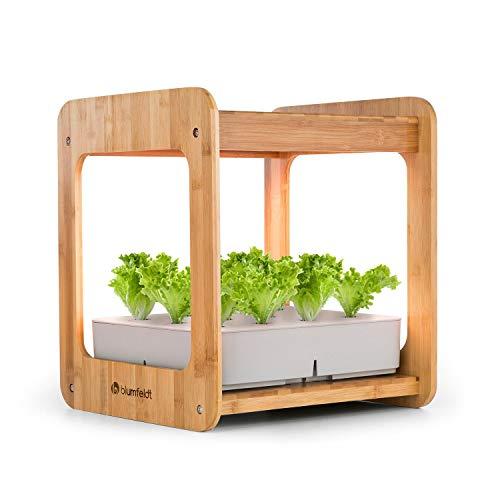 blumfeldt Urban Bamboo Indoor Garden • Sistema Piantagione • Serra Coperta • 12 Piante • Pompa di Circolazione Integrata • LED 24 W • 7 L • Coltivazione in Soluzione Nutritiva • Bambù • Marrone