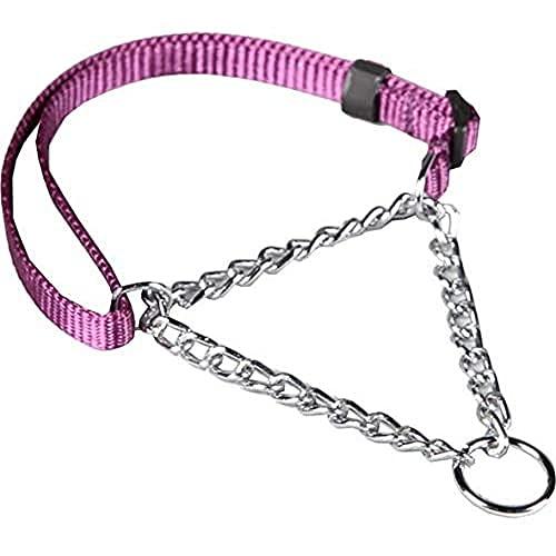 Arppe 227501020017 Collar Educativo Nylon Plano, Purpura