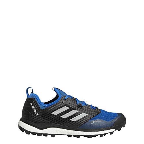 adidas Herren Terrex Agravic Xt GTX Traillaufschuhe, Blau (Belazu/Gricin/Negbás 000), 42 2/3 EU