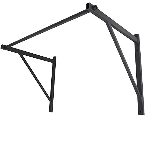 Titan Fitness Wall Mounted Pull Up Bar