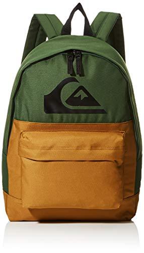 Quiksilver Men's Everyday, Colour Block, Backpack, Greener Pastures, Volume: 16 L