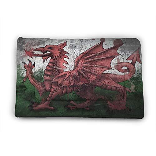 Medium Dog Bed Mat Wasbaar Krattenmatras 35 Inch Niet Slip Huisdier Kussen Pad Wales Draak Symbool Vlag, 35