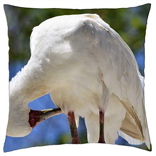 LESGAULEST Throw Pillow Cover (16x16 inch) - Bird Safari Park San Diego