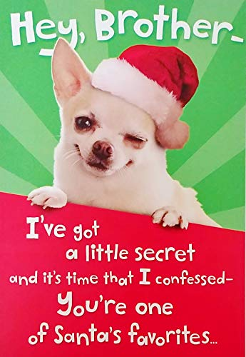 Hey Brother Funny Merry Christmas Greeting Card with Chihuahua Dog - I've Got A Little Secret