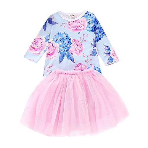 IZHH Kinder MäDchen Rock Set 12M-5T Kinder Langarm Floral Tops Net Rock Set Kleinkind Kinder Baby MäDchen Mit T-Shirt Prinzessin Tulle Party Dress(Blau,110)