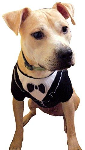 Frenchie Mini Couture Dog Tuxedo, (X-Small)