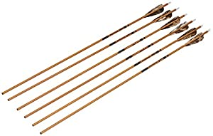Gold Tip Traditional Arrows