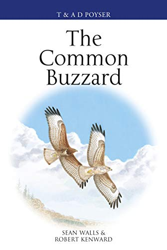 The Common Buzzard (Poyser Monographs)