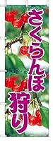 のぼり旗 のぼり 【 さくらんぼ狩り サクランボ 】[フルカラー] サイズ60×180cm