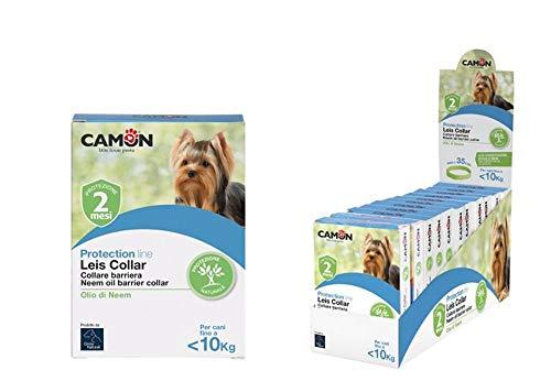 Ulisse Quality Shop Camon Halsband Leis Hund cm. 35. Saison komplett mit 3 Packungen