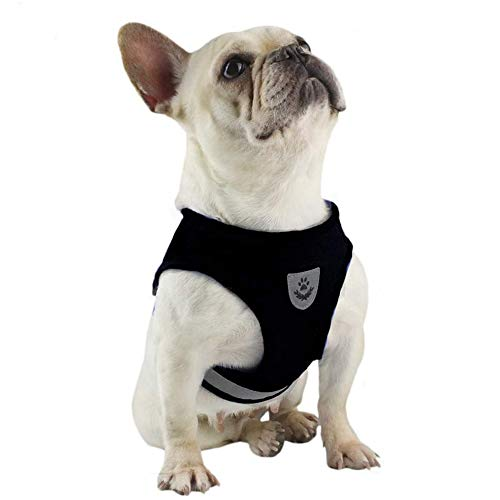 FeiLuo Hundegeschirr und Leinen Set für Hunde, Weich Mesh Gepolstert Geschirr für Welpen und Katzen, Reflektierende Verstellbare Atmungsaktive Brustgeschirr für Gehen, Laufen, Training (S, Schwarz)