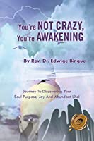 You're Not Crazy, You're Awakening: Journey To Discovering Your Soul Purpose, Joy And Abundant Life!