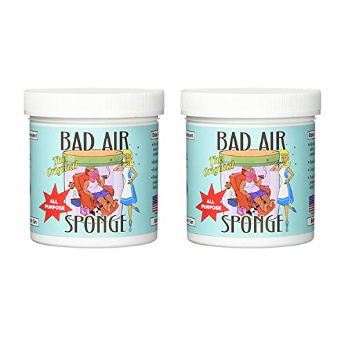 Bad Air Sponge Air Odor Absorbent, 14 ounce, 2-Pack