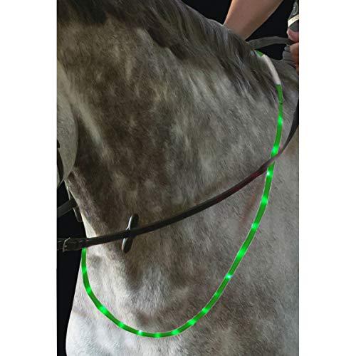United Sportproducts Germany USG Leuchtender LED-Halsring für Pferde mit integriertem USB-Anschluss (grün)