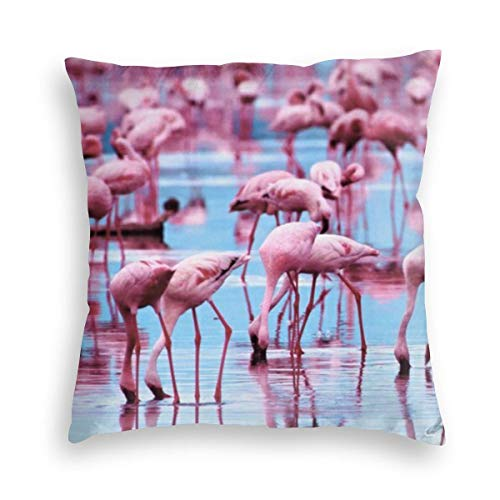KXT Flamingos Water Birds Decorative Velvet Throw Pillow Covers,Cushion Case for Couch Sofa Bed 18'' x 18