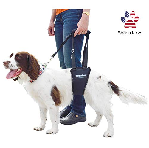 GingerLead Dog Support & Rehabilitation Harness -...