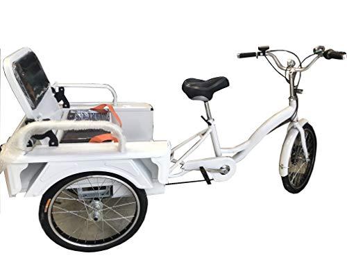 Elektrisches Dreirad für Erwachsene, 250 W, 12 Ah, mit Transportkasten, inkl. Korb und Sitz mit Rückenlehne