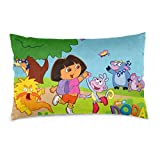 D-Ora Funny The Ex-Plorer Double-Sided Super Soft Pillow Cover for Bedroom Unique Pillowcase with Hidden Zipper 20' X30