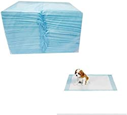 PetBuddy 200 Counts Disposable Puppy Pet Housebreaking Training Under Pads Chux Potty Wee Wee Pads Dogs or Cats …
