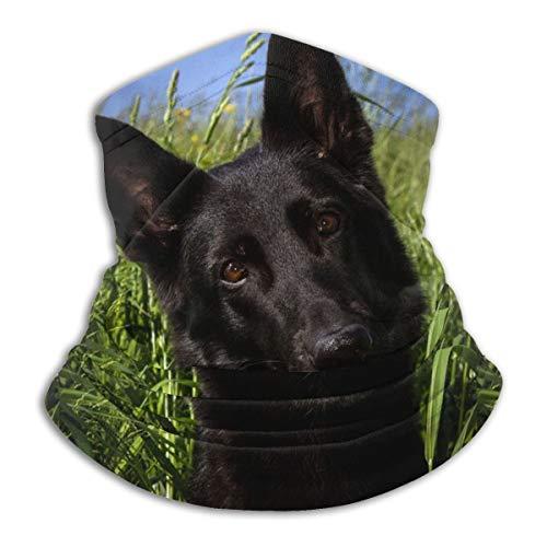 German Shepherd Dog Neck Gaiter Warmer Windproof Mask Dust Face Clothing UV Face Mask Balaclava Scarf for Ourdoor Sport Black