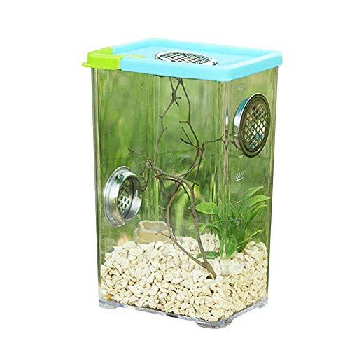 Buding Spinne Fütterungsbox Haustier Fütterungsbox Haustierzubehör Reptilienzuchtbox Haustierkäfig Zubehör
