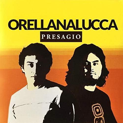 Orellana Lucca
