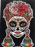 Terciart Diseño de calavera mexicana de terciopelo para colorear. Dimensiones: 38 x 29 cm.