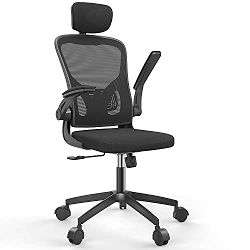 naspaluro Home Office Chair Ergonomics Computer Chairs with Adjustable Lumbar Support and Headrest Flip-up 3D Arms Comfortable Breathable mesh Design for Home Office(Black)
