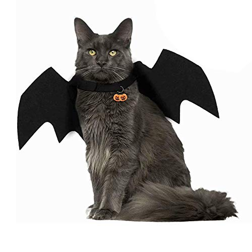 Amasawa Mascotas Alas de Murciélago, Disfraz de Mascota de Halloween Murciélago,Disfraz de Mascota Ropa Halloween Calabaza Gato Campana,Apto para Cachorros y Gatitos.