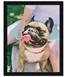 30x40 Black Wood Picture Frame - with Acrylic Front and Foam Board Backing
